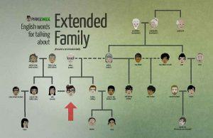 Từ vựng tiếng Anh về các mối quan hệ trong đại gia đình